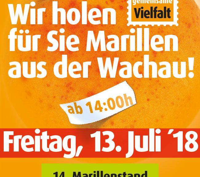 Marillen aus der Wachau
